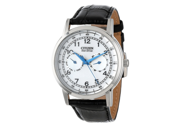 citizen-eco-drive-day-date-casual-ecodrive